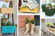 Spring Planters