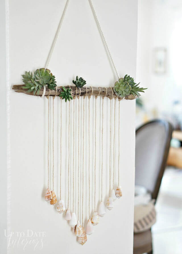Seashell Wall Hanging with Succulents