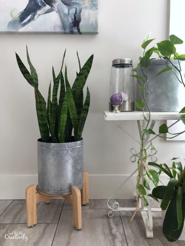 DIY Rustic Tin Plant Holder
