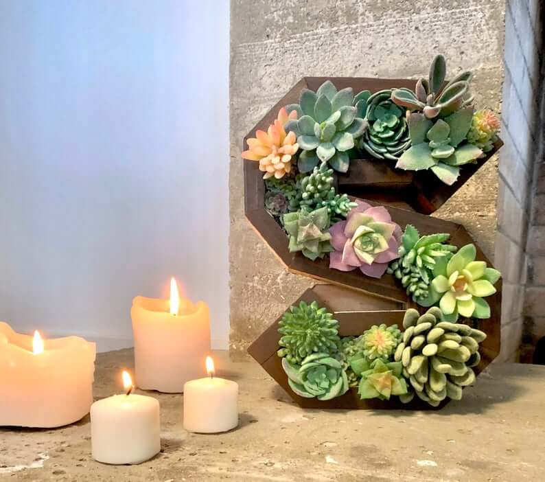 Wooden Letter Full of Hearty Succulents