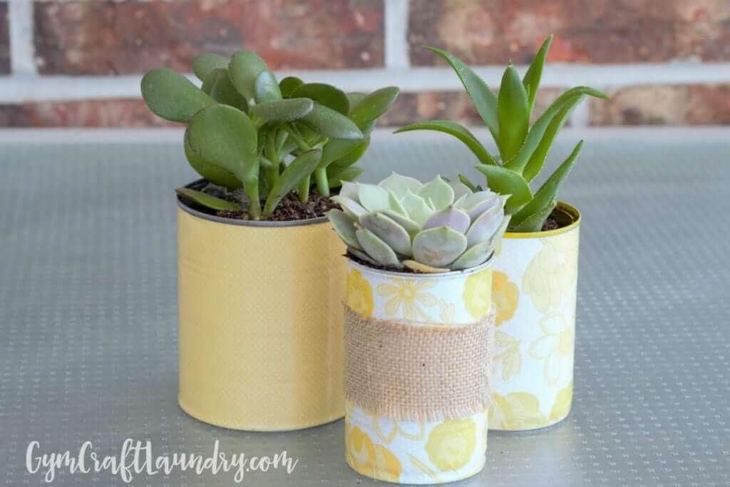 Tin Can Decoupage Succulent Planters