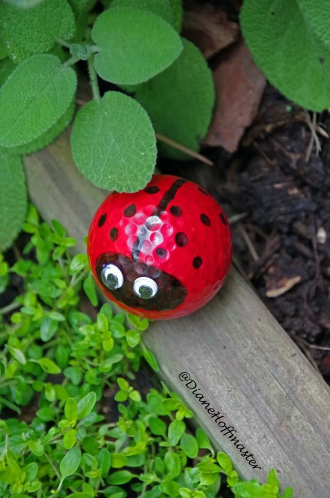 Goofy and Googly-eyed Golf Ball Ladybug Garden Friend