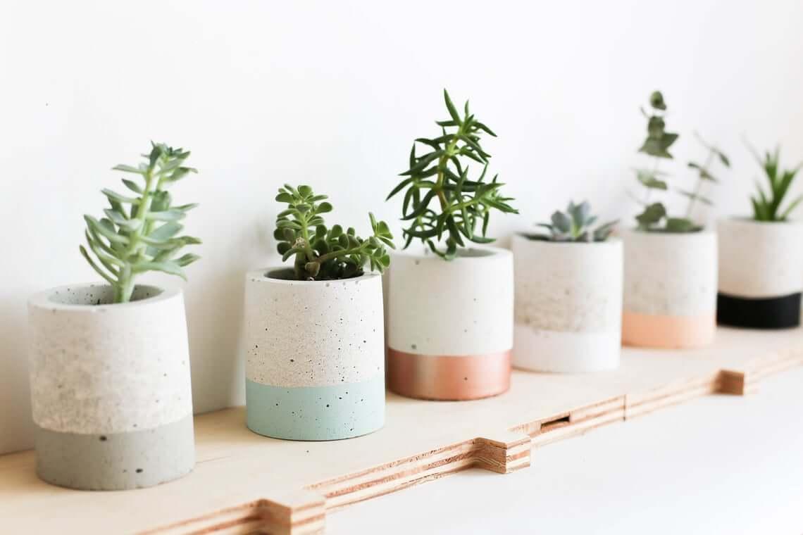 Best Concrete Decor Succulent Planter