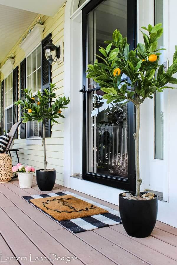 Easy Peezy Lemon Squeezy Set of Trees to Decorate Your Front Door