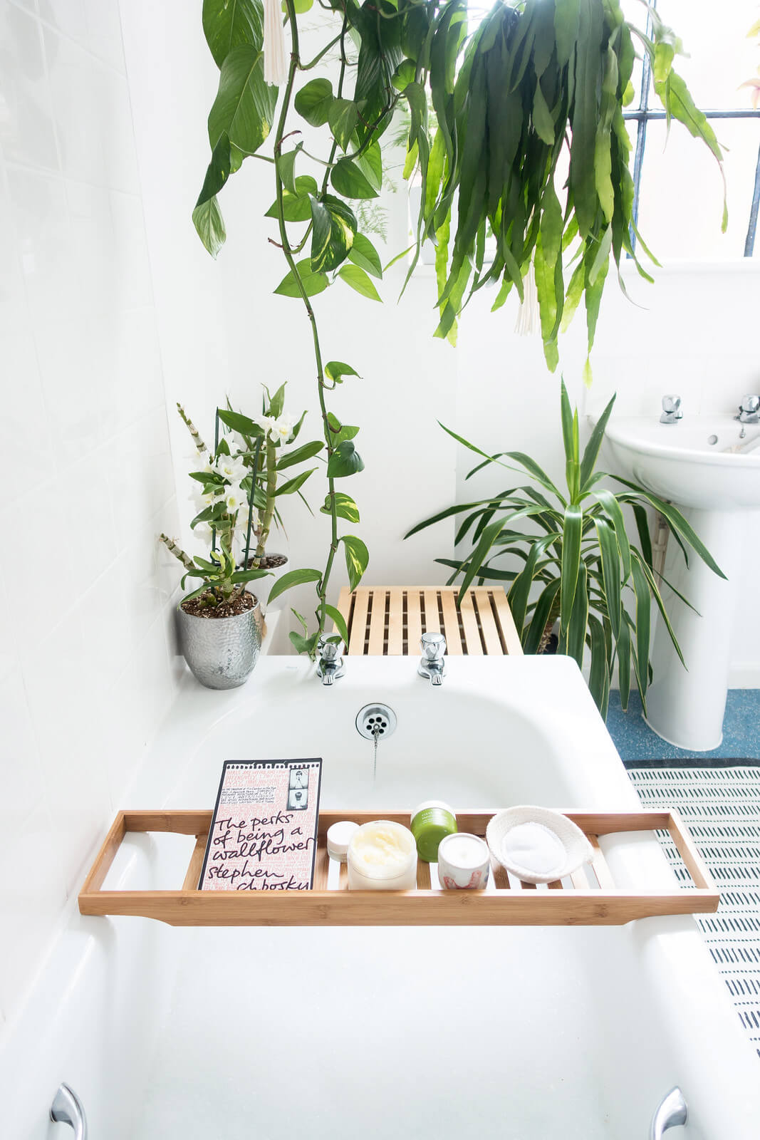Slip into Serenity with Natural Light and Perfect Plants