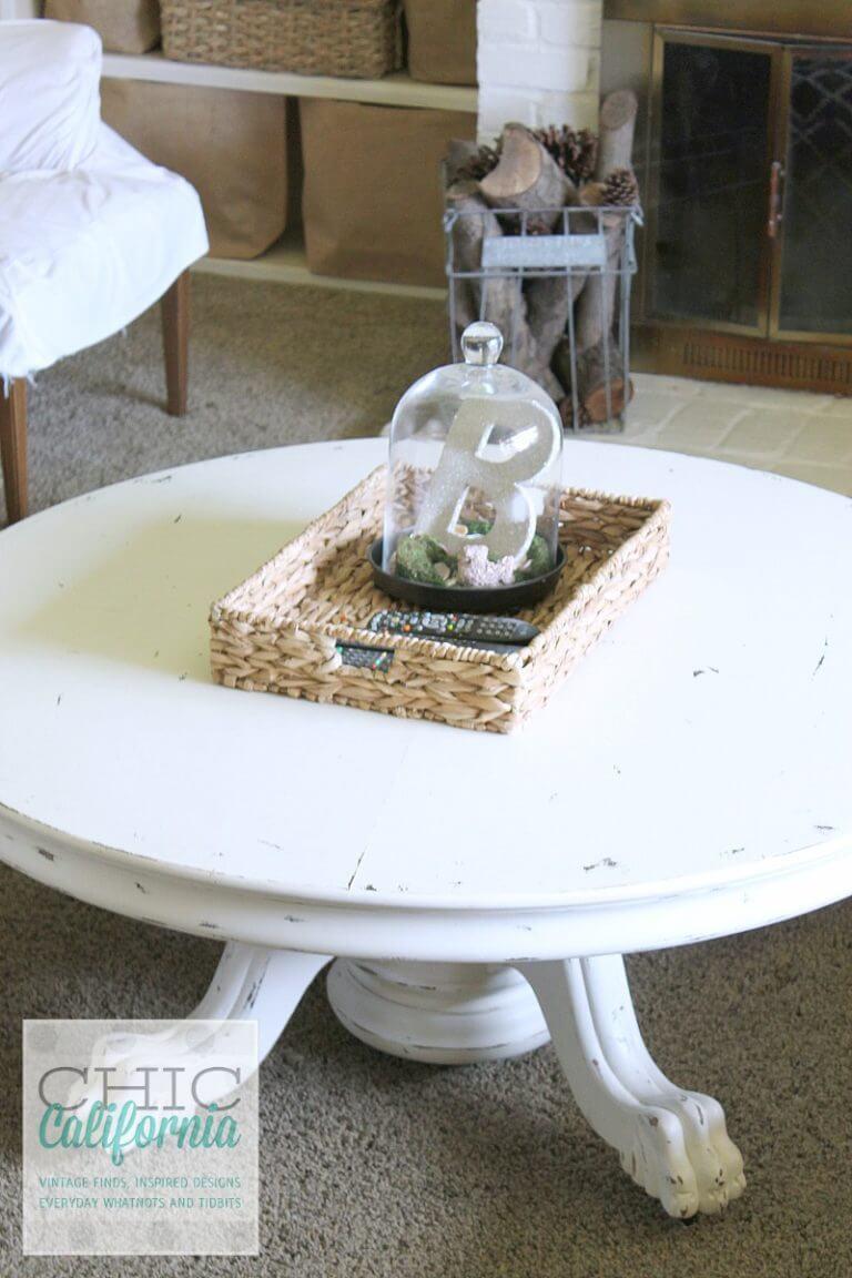 Unique Personalized Bell Jar Terrarium