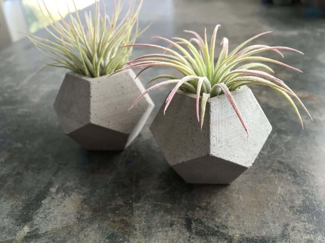 Set of Two Concrete Geometric Planters
