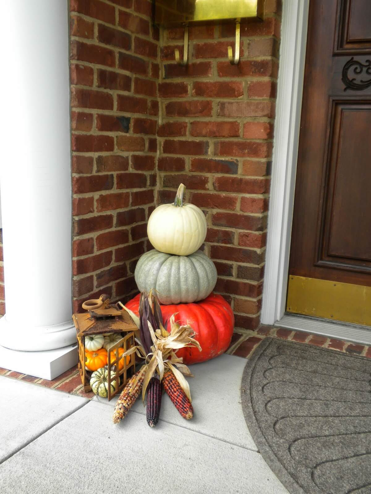 Flint Corn and Miniature Pumpkins