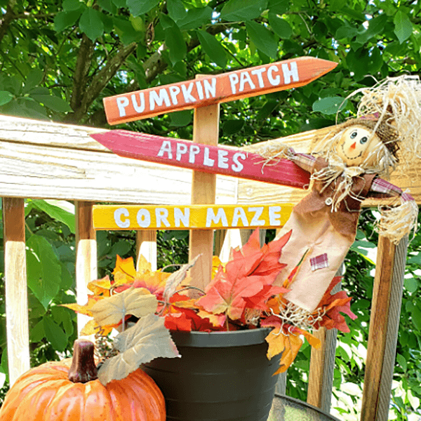 Scarecrows, Pumpkins, and Mazes Oh My