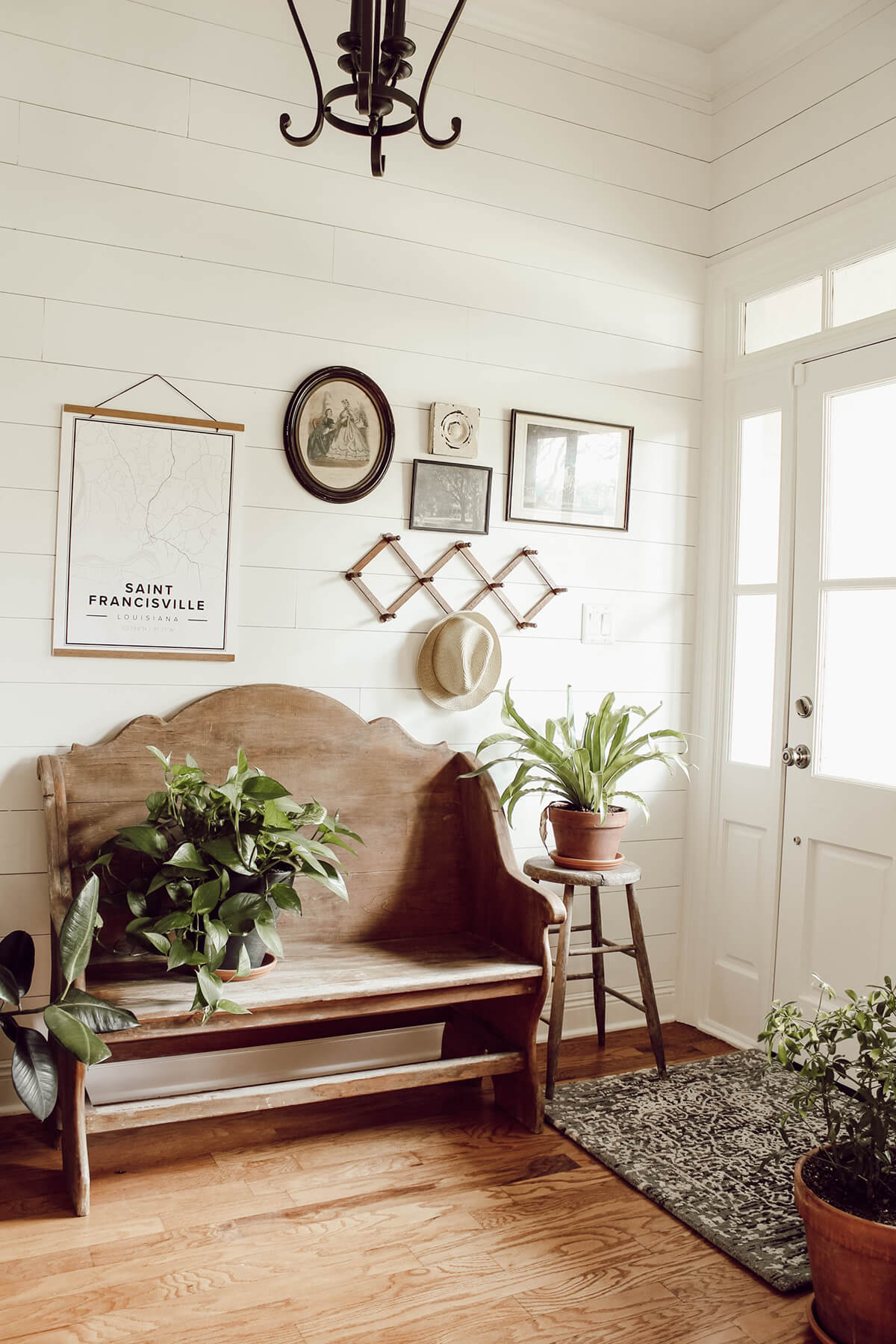 Light and Airy with Plants and Wood