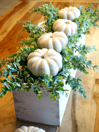 Pumpkins Nestled on a Bed of Greens