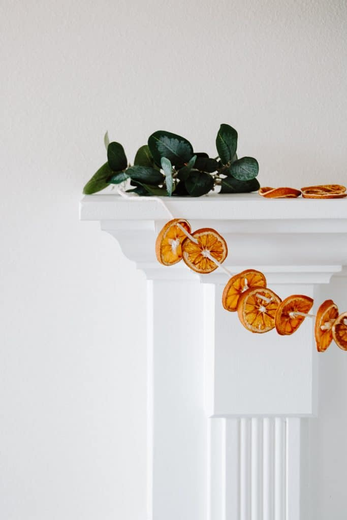 Orange You Glad to Have This Garland