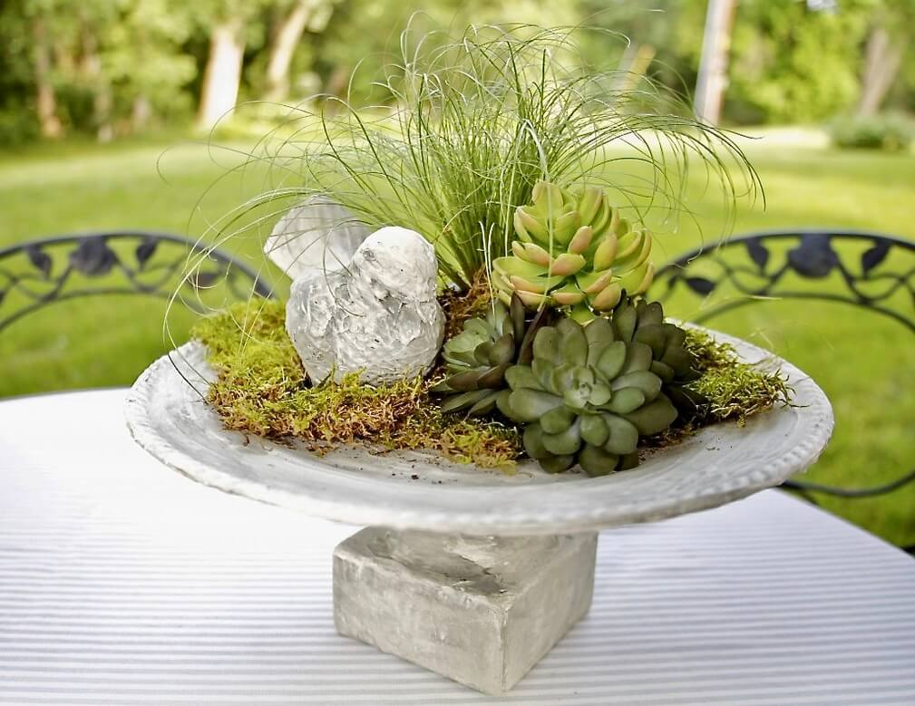 A Platter Full of Succulents and Moss