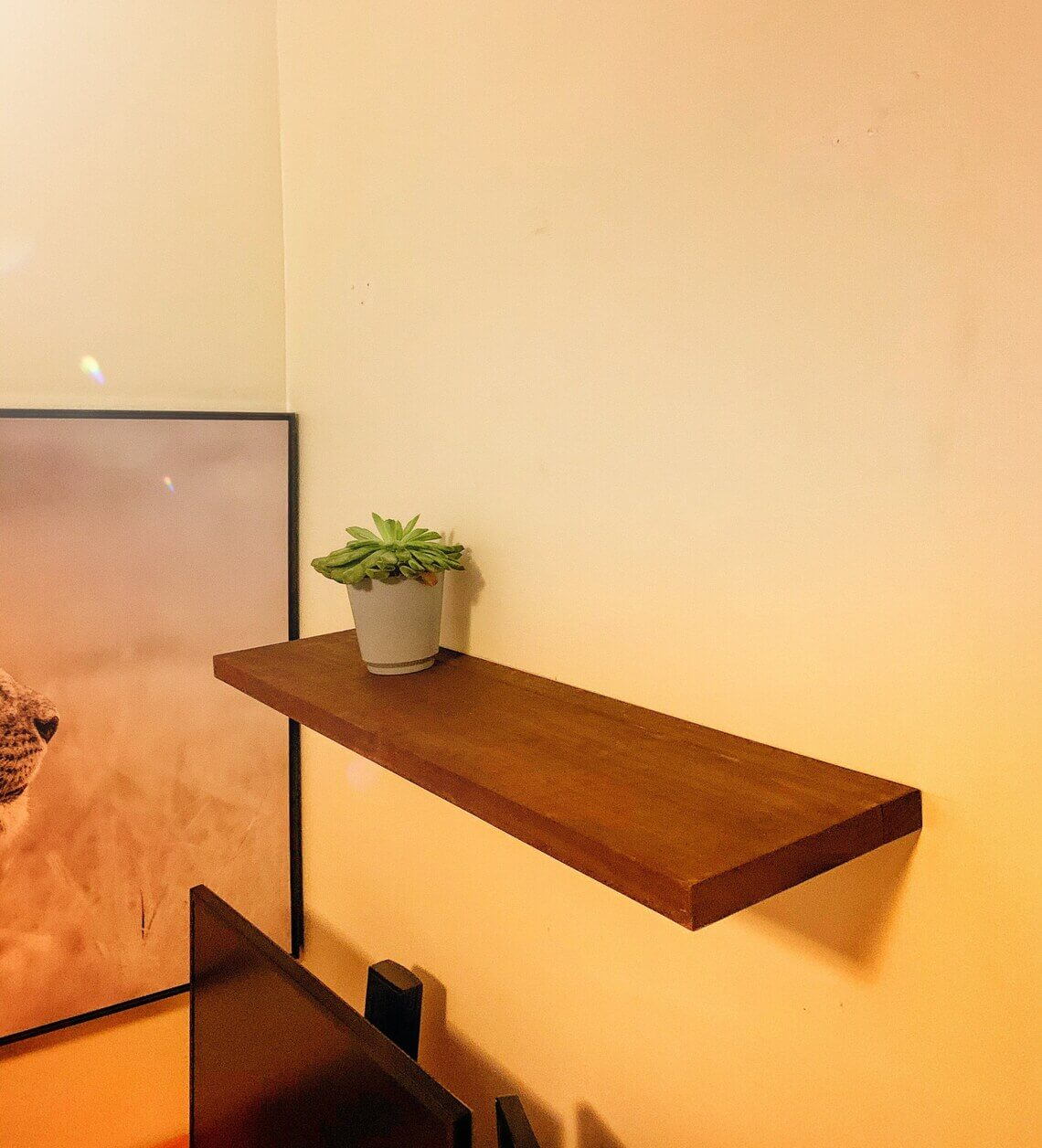 Plain and Simple Single Wooden Floating Shelf