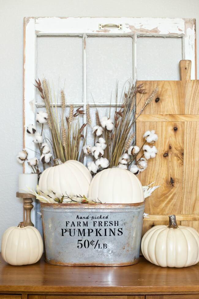 Hand-picked Pumpkins and Cotton Farmhouse Decor