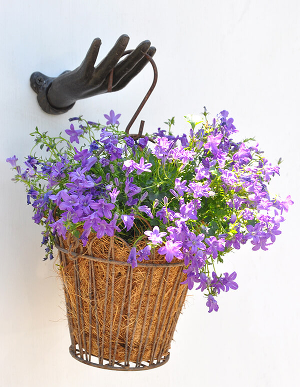 Hand and Hook Wire Flower Basket Holder