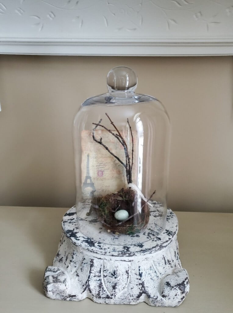 Decorative Vintage Base Bird Nest Glass Cloche