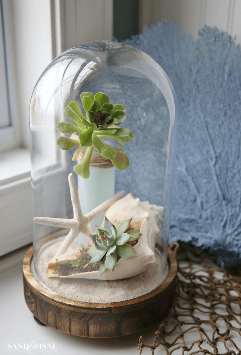 DIY Coastal Cloche Farmhouse Decor