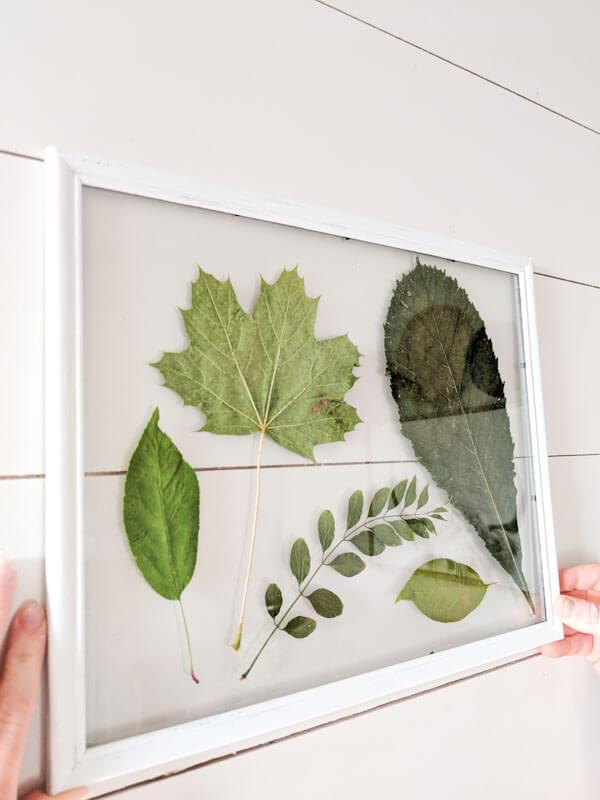 Glass Framed Hanging Leaf Arrangement