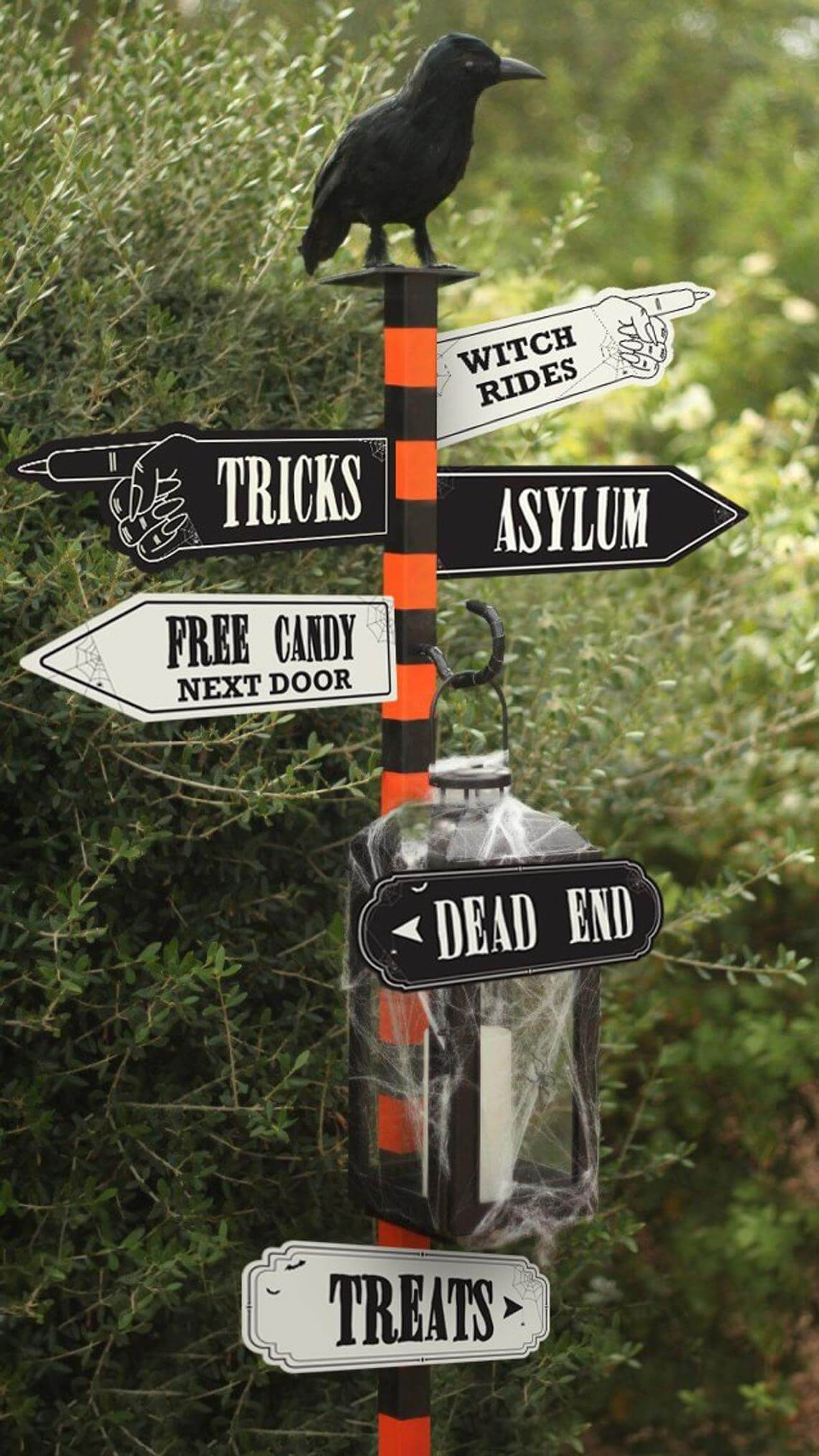 Haunted Raven Directional Striped Sign