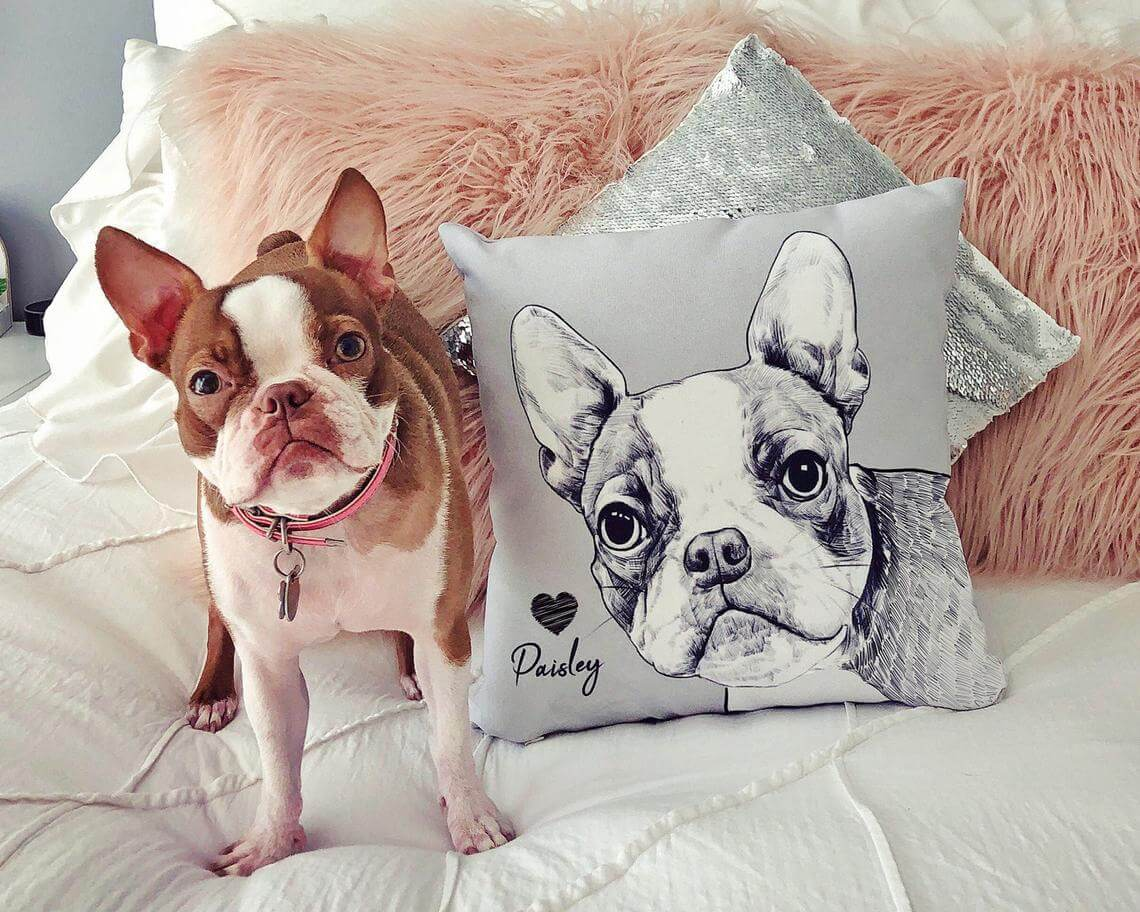 Custom Artistic Portrait Pet Pillow