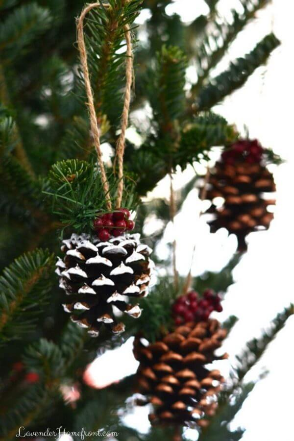 White-Crested Pinecone and Cranberry Baubles