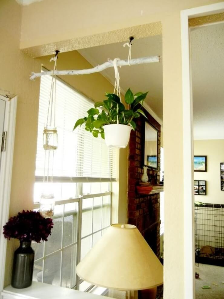 Painted Branch Plant Hanging Display