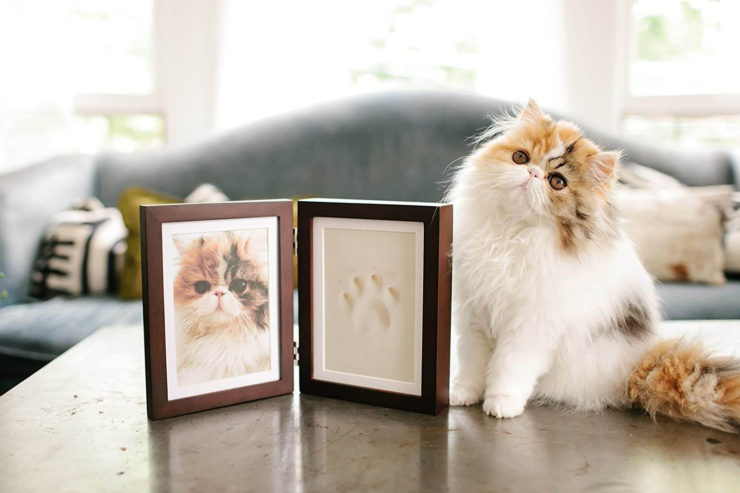 Paw Imprint Keepsake and Picture Frame