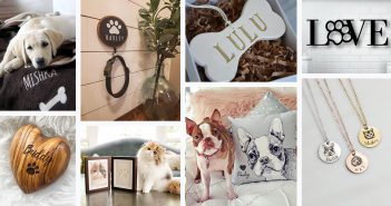 Best Gift Ideas for Pet Lovers