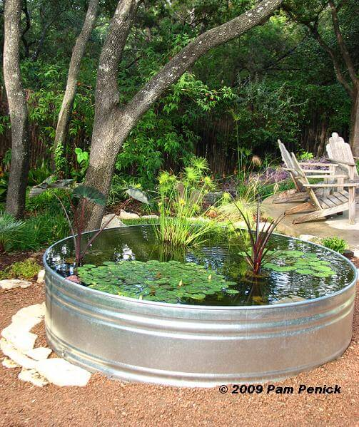 Backyard Pond Made From a Stock Tank