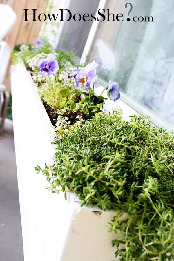 Inexpensive DIY Window Flower Boxes