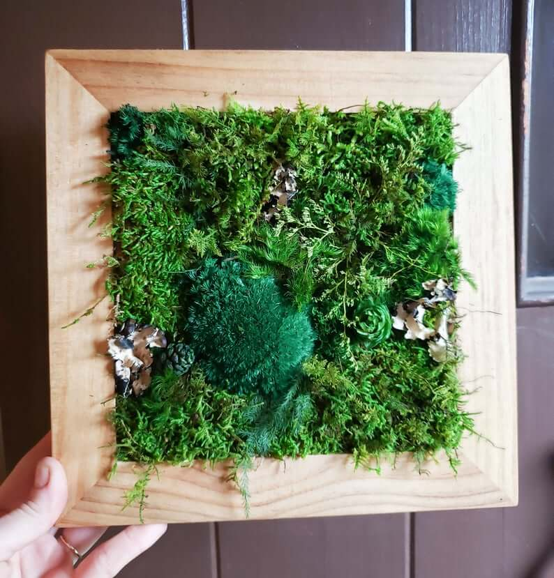 Juicy Wall Hanging Moss Art