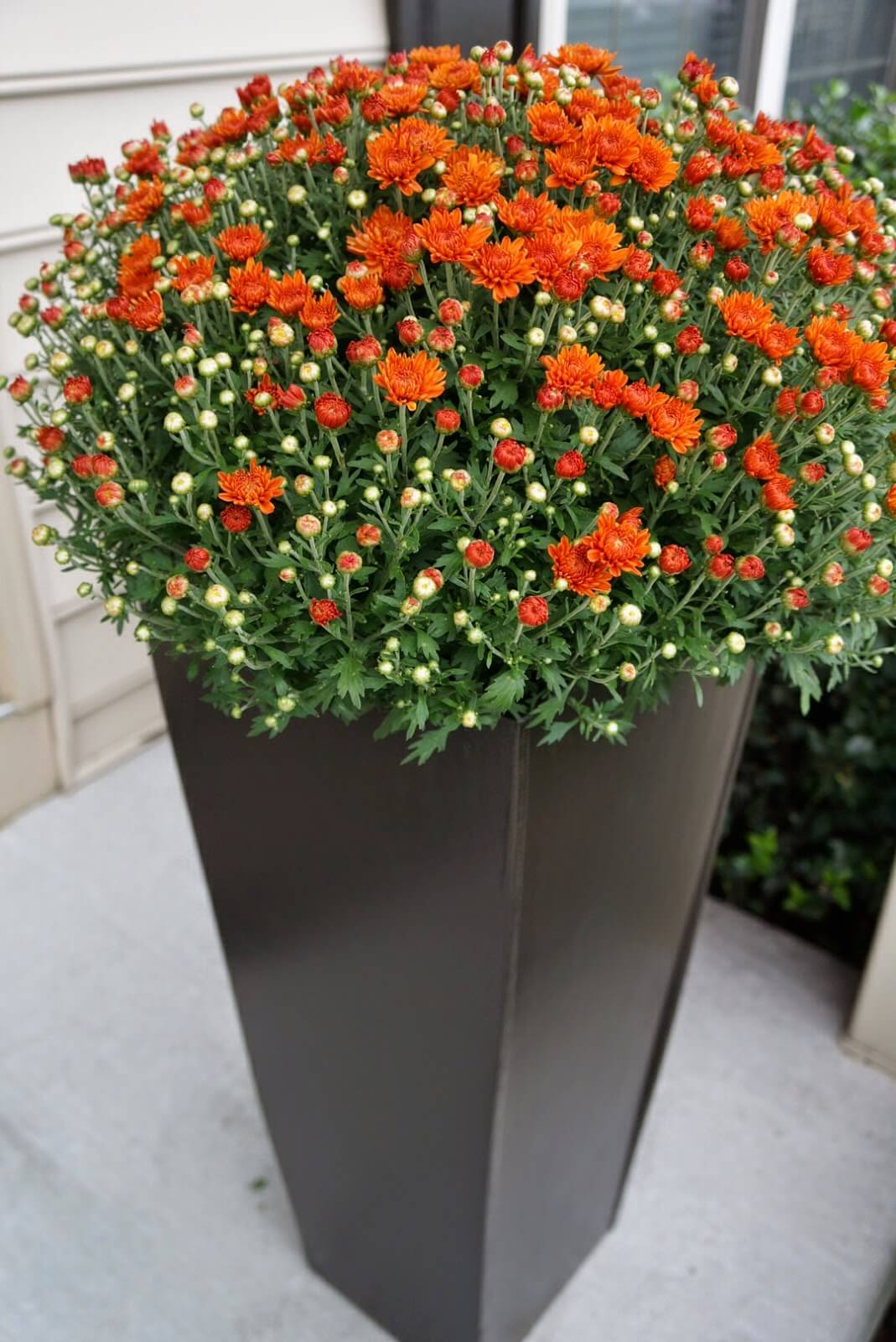 Tall Tapered Modern Porch Planter