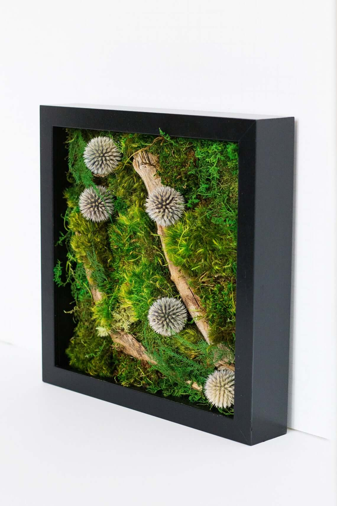 Spherical Moss Art Wall Design