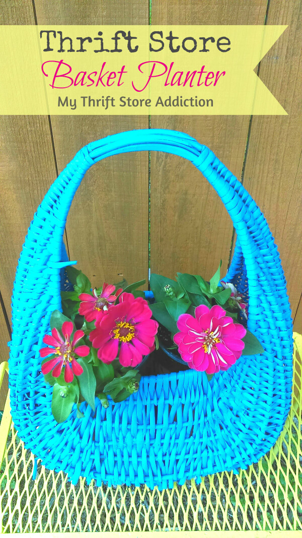 A Colorful Wicker Planter Wonderland