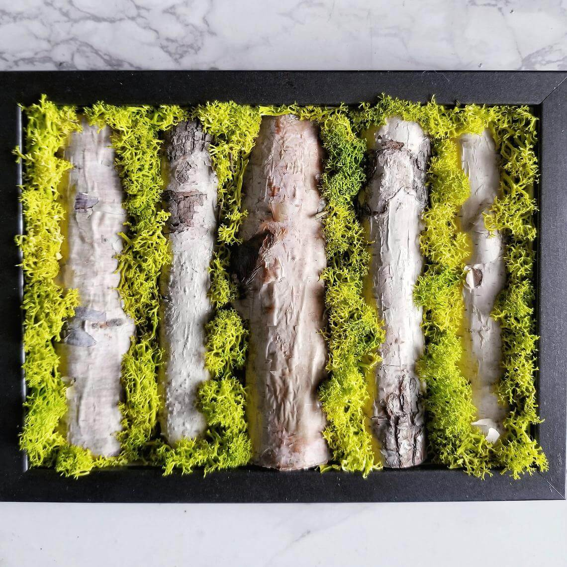 Moss and Bark Preserved Wall Decor