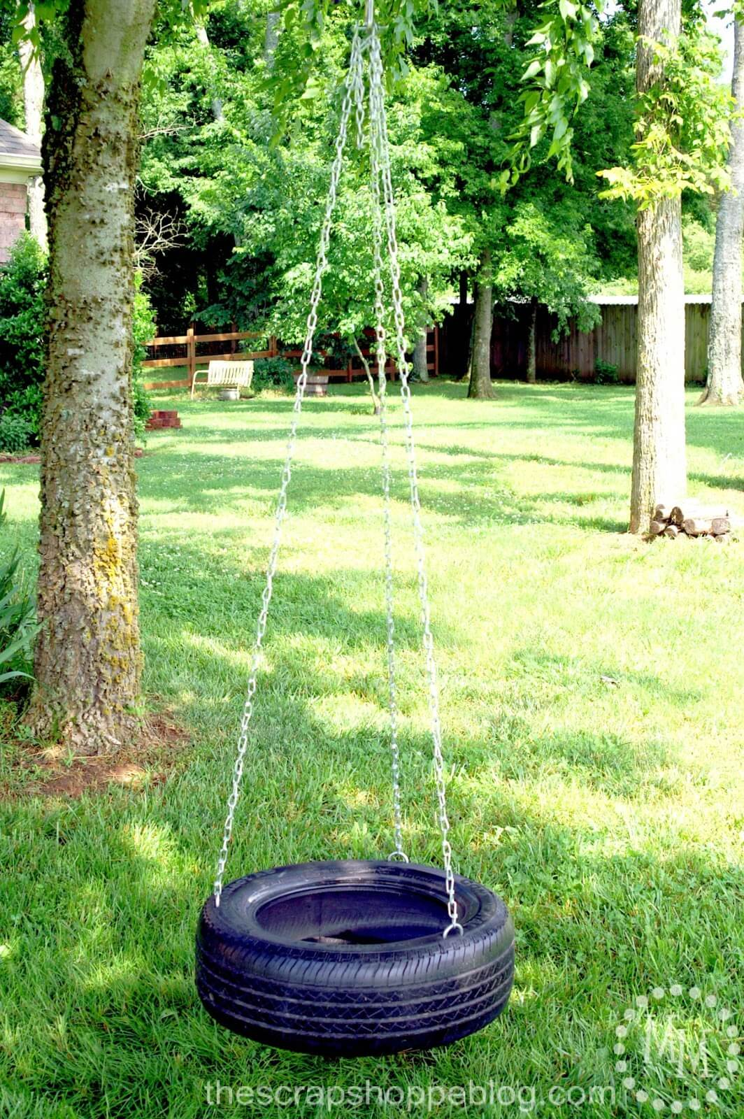 The Good Old Traditional Tire Swing
