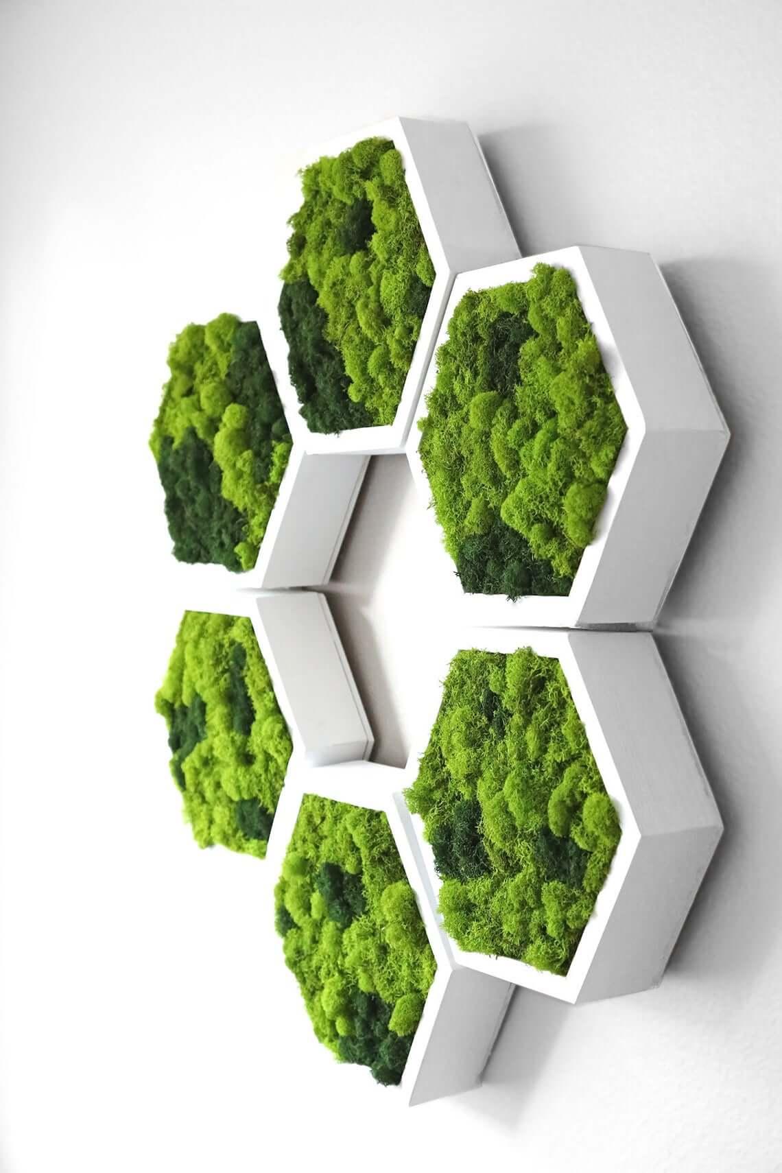 Walnut Green Moss Wall Art
