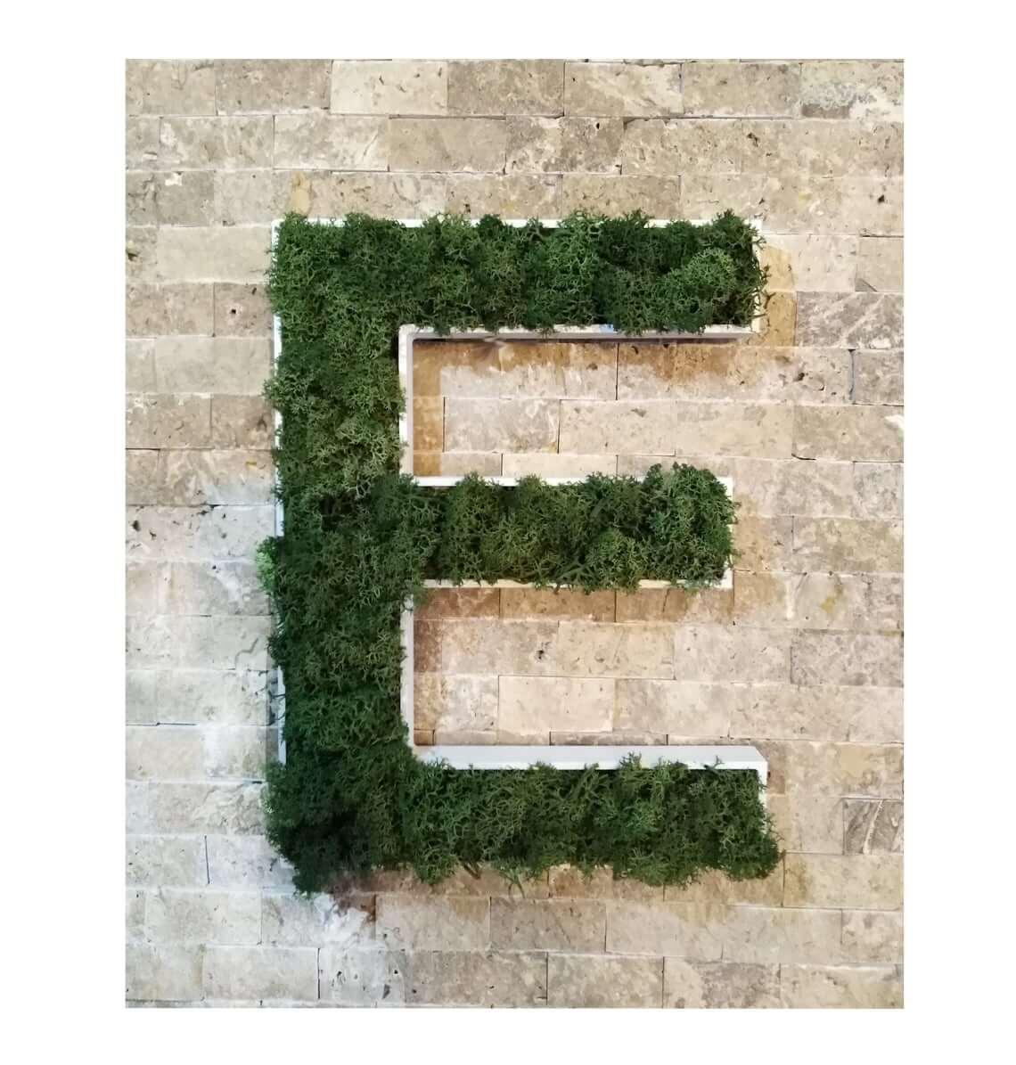 Custom Moss Covered Wall Piece