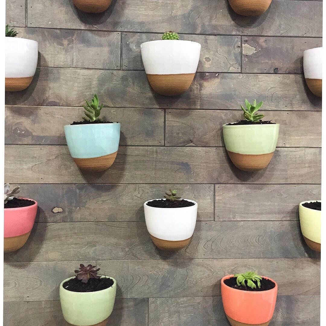 Eye-Catching Stoneware Wall Planters