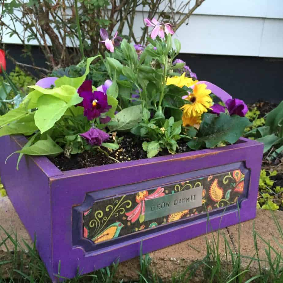 Vibrant Violet and Decoupage Planter Box