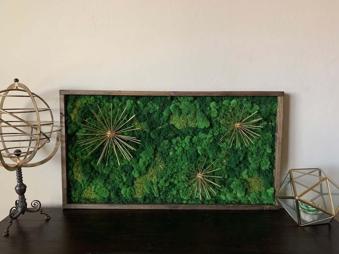 Real Starburst Living Moss Art