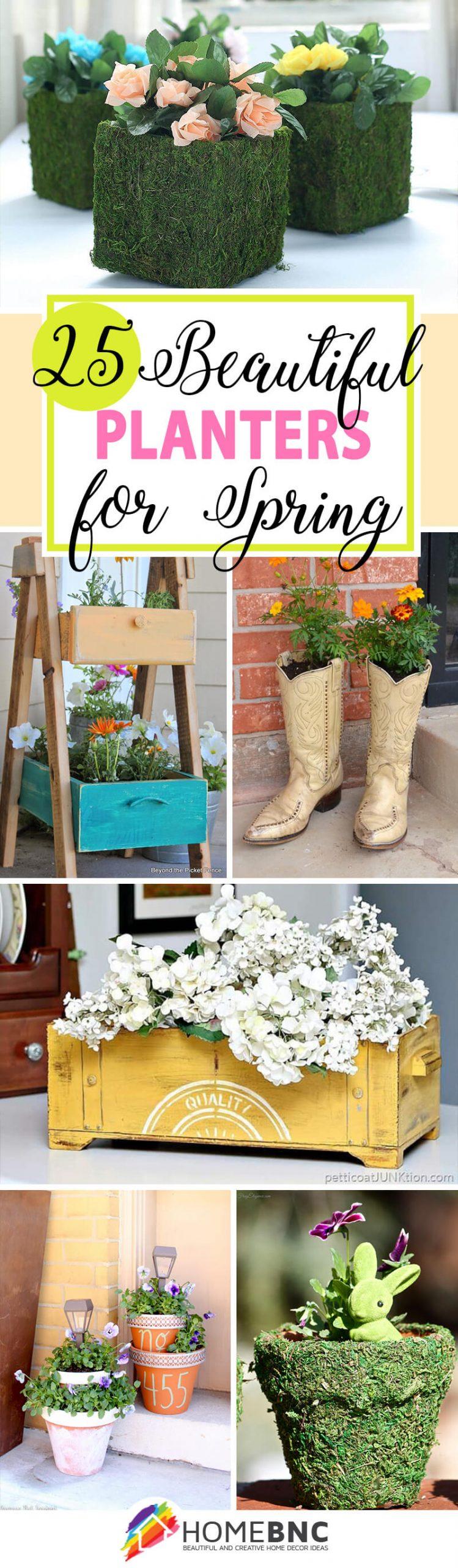 Best Spring Planter Ideas