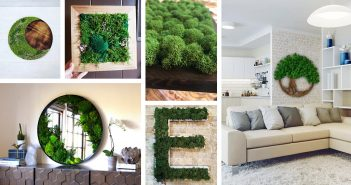 Best Moss Wall Arts