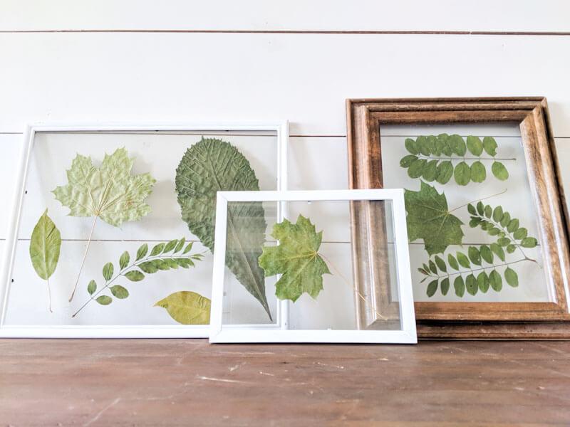 DIY Cheap and Simple Leaf Pressed Prints