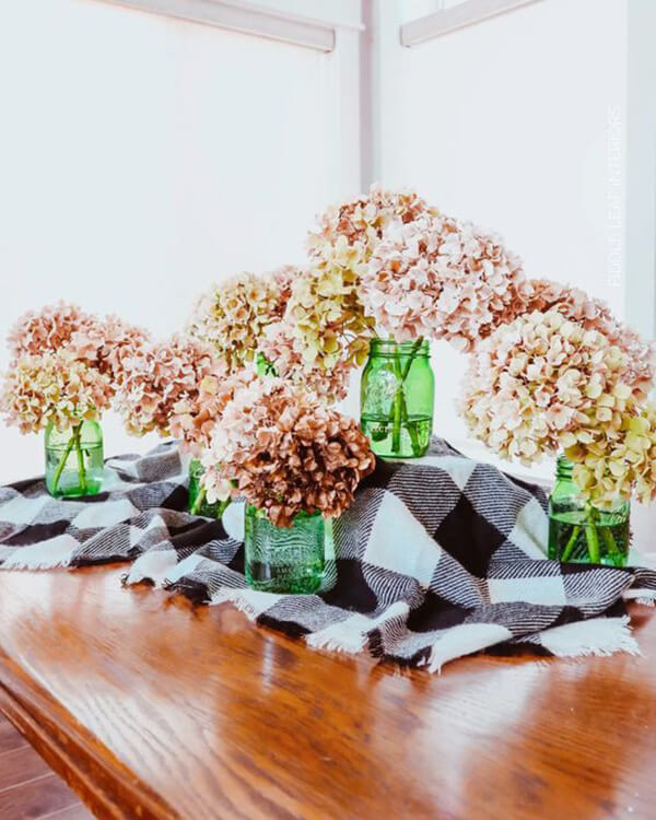Large and Dry Blooming Hydrangeas