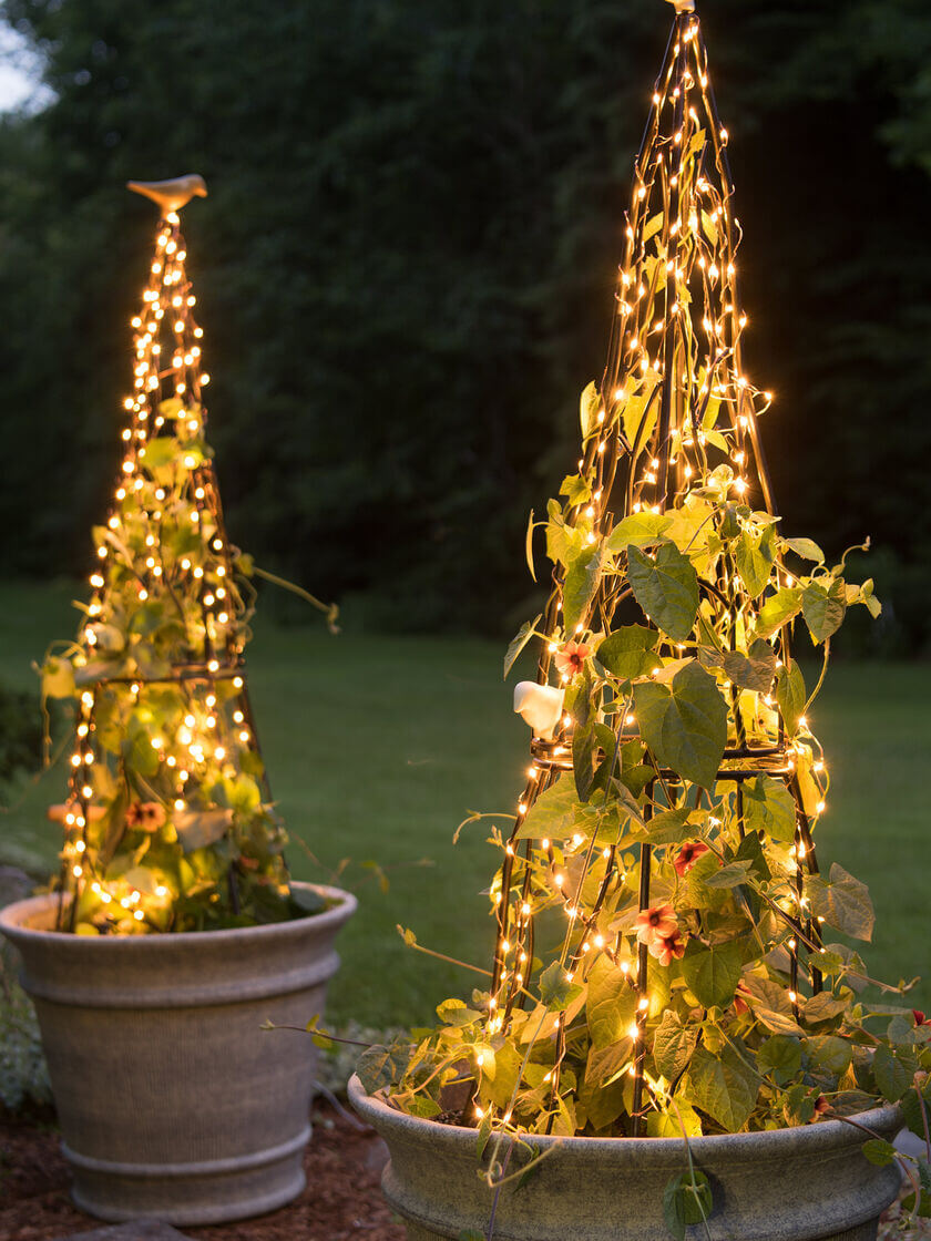 Gorgeous and Glowing Garden Trellis with Lights
