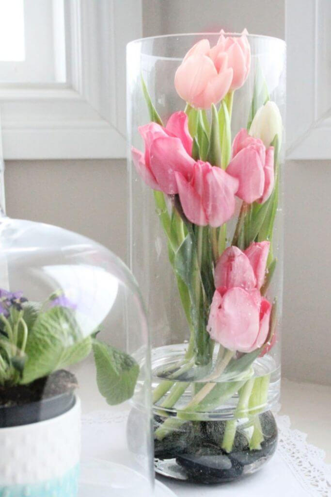 Modern Styled Tulips within a Tall Vase