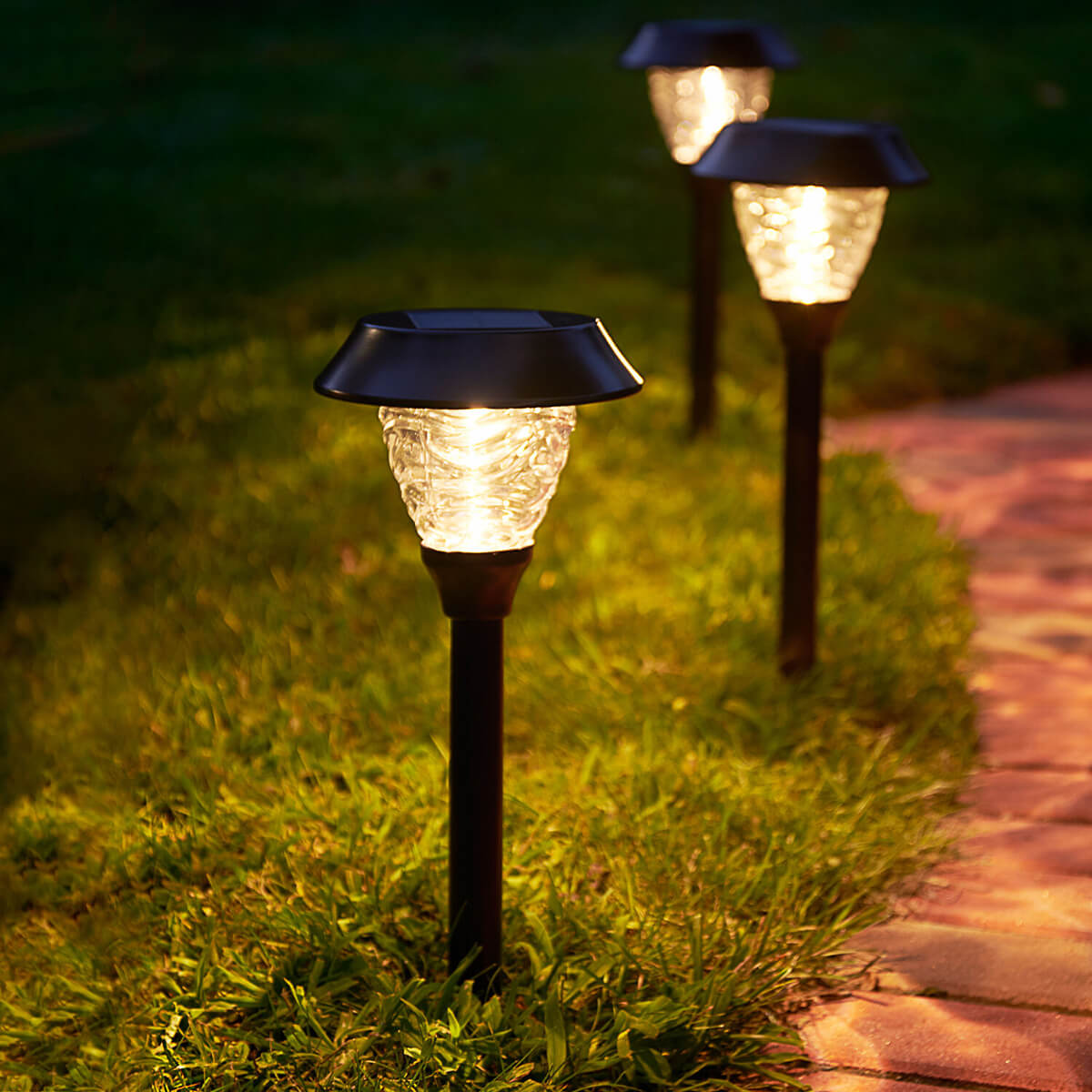 Light Your Way with Staked Solar Lights