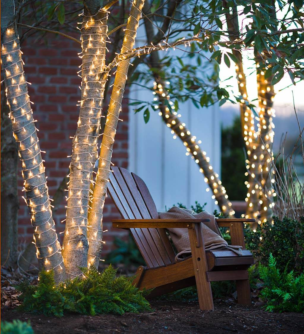Tropical Trees Trimmed with Twinkling Lights